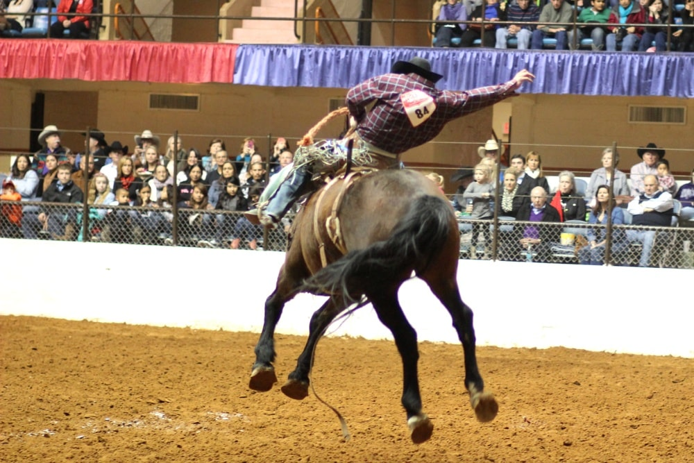 Stock Show 2020.Fort Worth Stock Show And Rodeo A Tradition Of Growth Jpmorgan Chase And Co