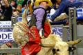 RodeoHouston is World's Largest Livestock Exhibition and Entertainment Event