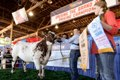 State Fair of Texas Announces 2016 Theme Celebrating Texas Agriculture